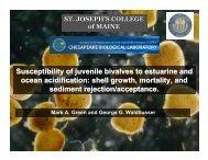 Susceptibility of juvenile bivalves to estuarine and ocean acidification