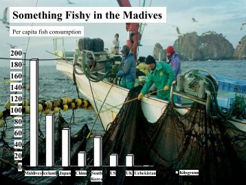 Something Fishy in the Madives - Seafood Choices Alliance