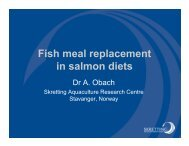 Fish meal replacement in salmon diets - Seafood Choices Alliance