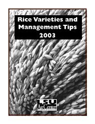 Rice Varieties and Management Tips 2003 - Texas A&M AgriLIFE ...