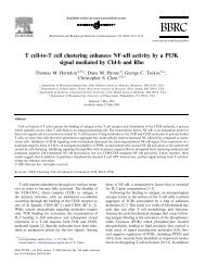 T cell-to-T cell clustering enhances NF-jB activity by a PI3K signal ...