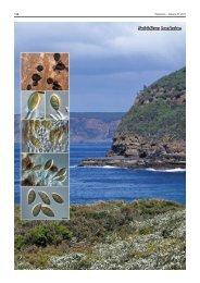 Seiridium banksiae - Fungal Planet