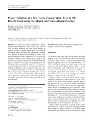Plastic Pollution at a Sea Turtle Conservation Area in NE ... - Springer