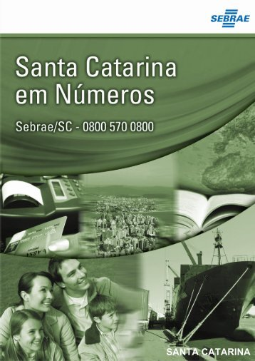 Relatório Estadual - Sebrae/SC