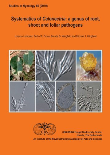 Front Matter (PDF) - Studies in Mycology
