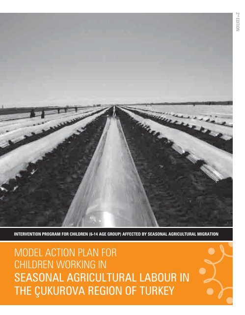 Model Action Plan For Children Working In Seasonal Agricultural Labour In The Cukurova Region Of Turkey