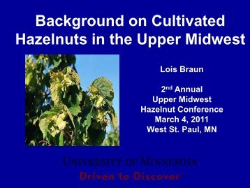 Hazelnuts in the Midwest-A Brief History - Upper Midwest Hazelnut ...