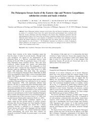 The Palaeogene forearc basin of the Eastern Alps and Western ...