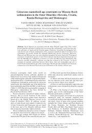 pdf (3.3 Mb) - Sedimentology & Environmental Geology