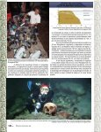 En los cenotes de Quintana Roo - Page 3