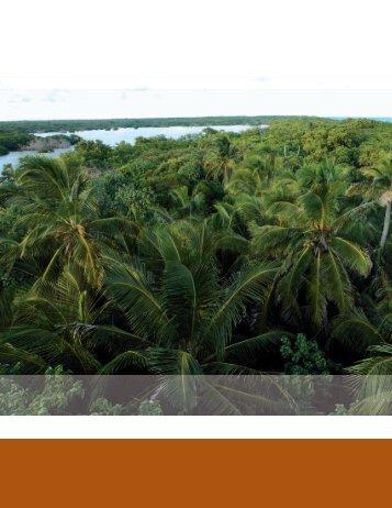 Capítulo 7. - Biodiversidad Mexicana
