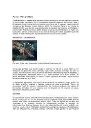 información sobre la especie