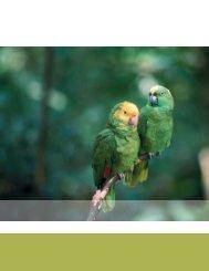 Política y gestión de la biodiversidad - Biodiversidad Mexicana