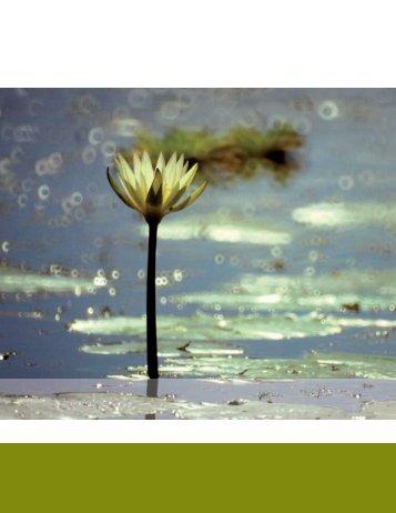 Uso y manejo de los recursos naturales - Biodiversidad Mexicana