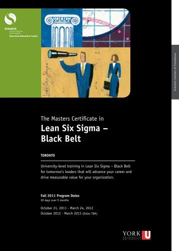 The Masters Certificate in Lean Six Sigma - Schulich Executive ...