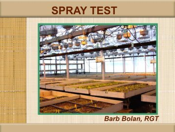SPRAY TEST