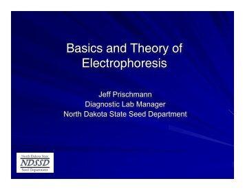 Basics and Theory of Electrophoresis