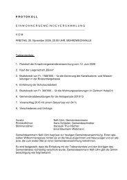 Protokoll EG 20.11.2009 - Seengen