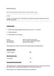 Protokoll OG 19.11.2010 - Seengen