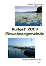 Einwohnergemeinde Seengen Erläuterungen zum Voranschlag 2013
