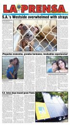 SA's Westside overwhelmed with strays - La Prensa De San Antonio