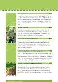 Infobroschuere Waldpaedagogik.pdf - Segeberg.info - Page 4