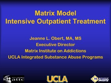 Matrix Model Intensive Outpatient Treatment