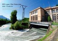 SEL 2011: DIE SPRACHE DER ZAHLEN - SEL AG