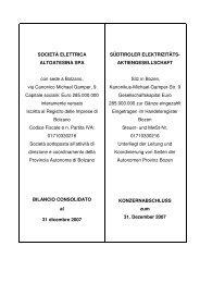 2008 06 11 SEL Bilanz Konzern 20073 - SEL AG