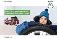 Eiskalt erwischt? Nicht mit uns! - im Škoda Autohaus Rüdiger GmbH