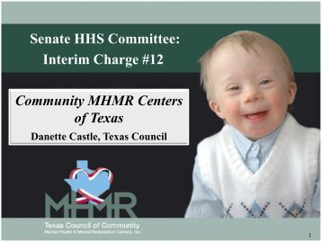 Community MHMR Centers of Texas Senate HHS Committee ...