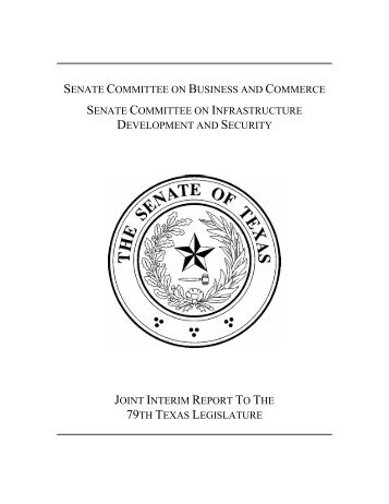 Security and Reliability of the Electric System in Texas - Senate