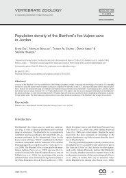 Population density of the Blanford's fox Vulpes cana ... - Senckenberg