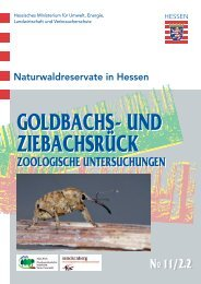 Goldbachs- und Ziebachsrück – Zoologische ... - Senckenberg