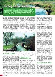 Ausflugstipp: Ein Tag an der Nidda - Senioren Zeitschrift Frankfurt