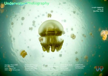 Underwater Photography Underwater Photography