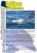 zonas de buceo - SENSACIONES.org - Page 6