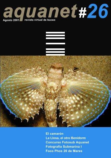 El camarón La Llosa, el otro Benidorm Concurso Fotosub Aquanet ...