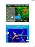 consciencia cuantica y el pulso.pdf - Sensoterapia - Page 5