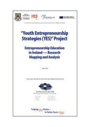 Youth Entrepreneurship Strategies (YES) - South-East Regional ...
