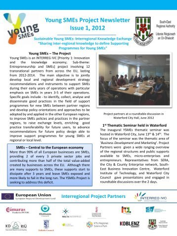 Young SMEs Newsletter - South-East Regional Authority