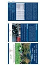 Descargar publicación en PDF