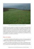 establecimiento de pastos.pdf - RIA - Page 7