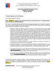 Reporte de Actividad Volcánica Nº57 - Sernageomin