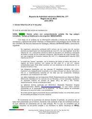 Reporte de Actividad volcánica (RAV) No. 377 ... - Sernageomin