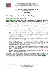 Reporte de Actividad Volcánica No. 41 REGIÓN DEL ... - Sernageomin