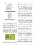 Capacitive-based dilatometer cell constructed of fused quartz for ... - Page 2