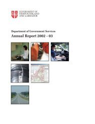 Annual Report 2002 - Service NL - Government of Newfoundland ...