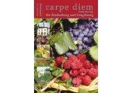 DER GILLAMOOS – DAS Fest der Hallertau - carpe diem magazine
