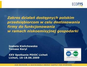 Zakres działań dostępnych polskim przedsiębiorcom w celu ...